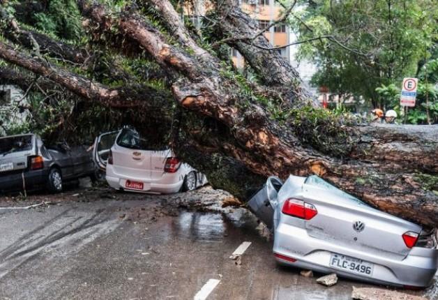 Seguros de casa e carro podem cobrir estragos causados por enchentes